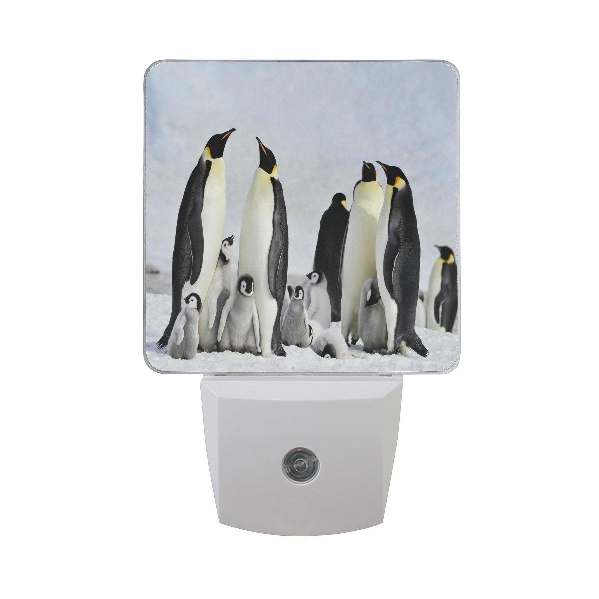 Alazaペンギン冬雪スノーフレークLED Night Light Dusk to Dawnセンサープラグin Night Home Decorデスクランプfor Adult B07BHMHP4F 13554