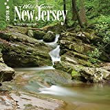 New Jersey, Wild & Scenic 2018 7 x 7 Inch Monthly Mini Wall Calendar, USA United States of America Northeast State Nature