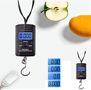 Digital Hanging food Scale, 5g-40kg, Rubber Paint, with Temperature Sensor and Tare Function, Portable Scale for Travel, Luggage,Fishing,Household and Gift, Silver, Battery Not Included