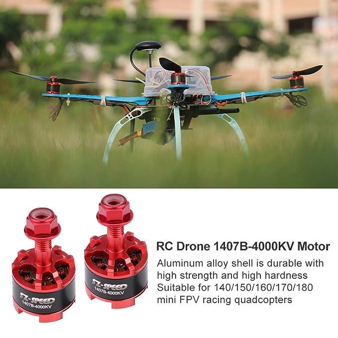 Rabusion - Dron de competición (4000 KV, Motor sin escobillas ...