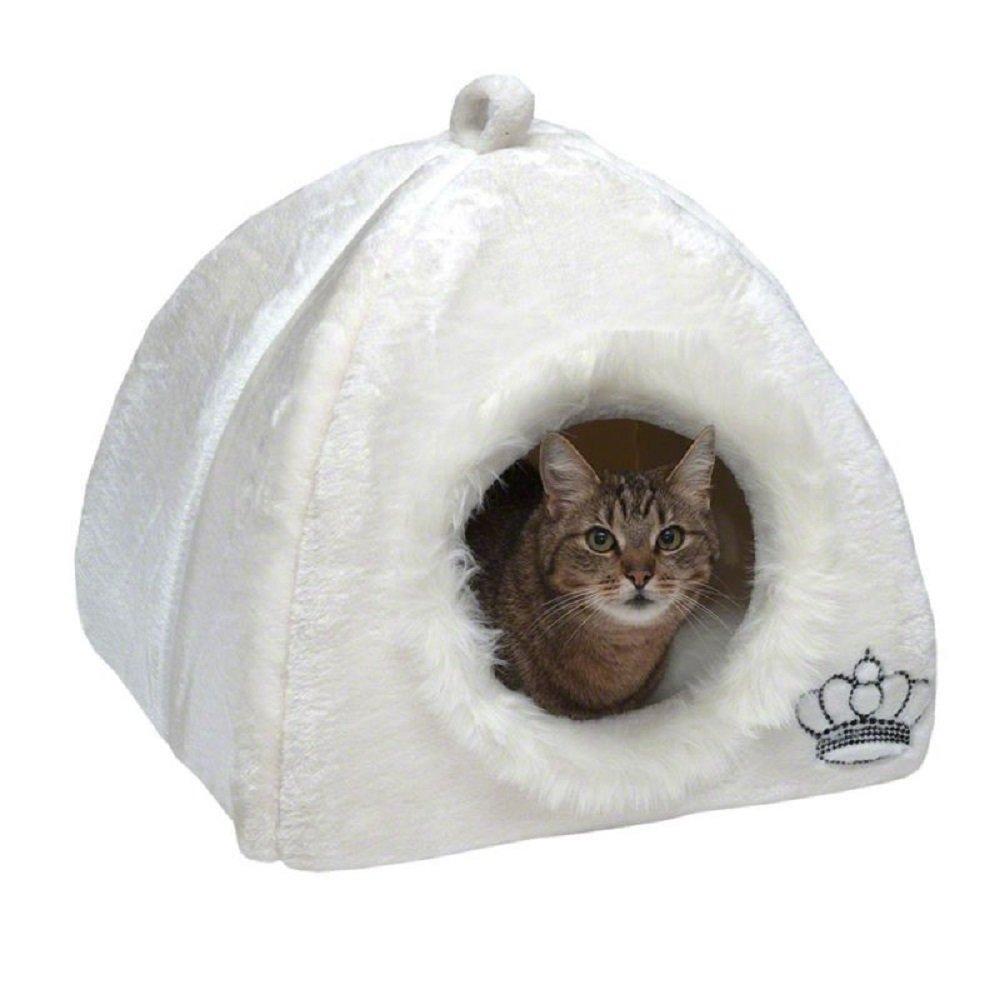 Royal mascota den - blanco gato gatitos: Amazon.es ...