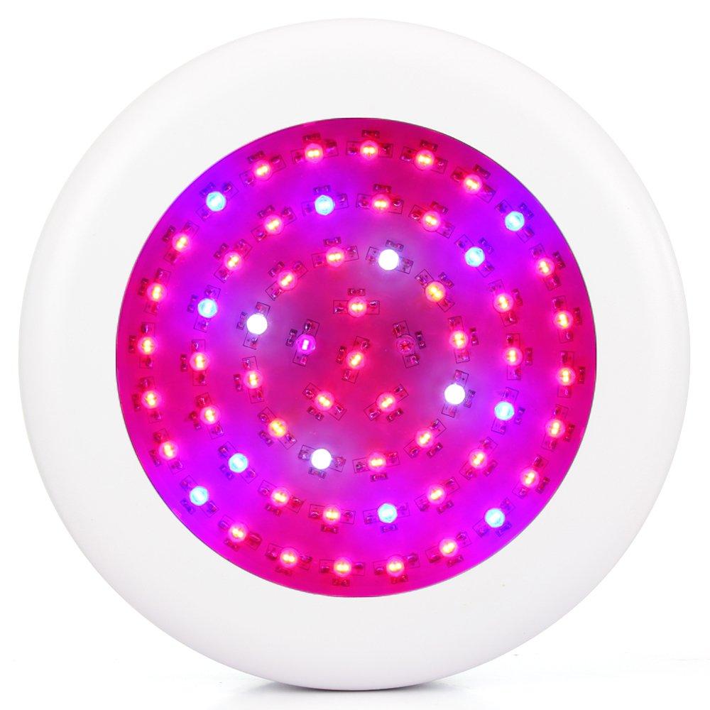 JADIDIS 600W Doppelchips UFO LED Pflanzenlampe 10 Band Vollspektrum für Hydroponik Gewächshaus Gartenbau Zimmerpflanzen Wachsend Blühen(10W Leds)