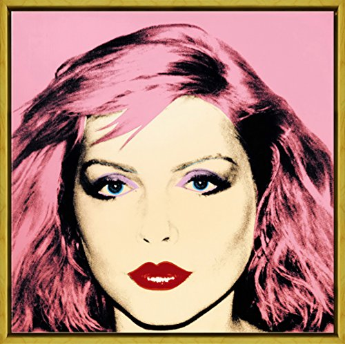 Berkin Arts Framed Andy Warhol Giclee Canvas Print Paintings Poster Reproduction (Debbie Harry)