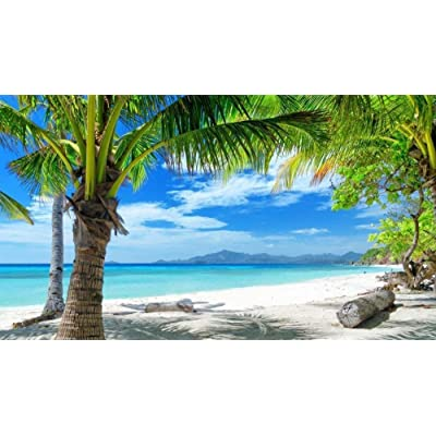 NA Jigsaw Puzzle for Adults 1000 Pieces - Tropical Beach Palm - DIY Set Unique Gift Home Decor Adult Children's Educational Toys: Toys & Games