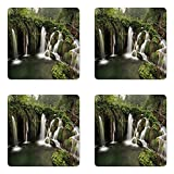 Ambesonne Waterfall Coaster Set of Four, Circled