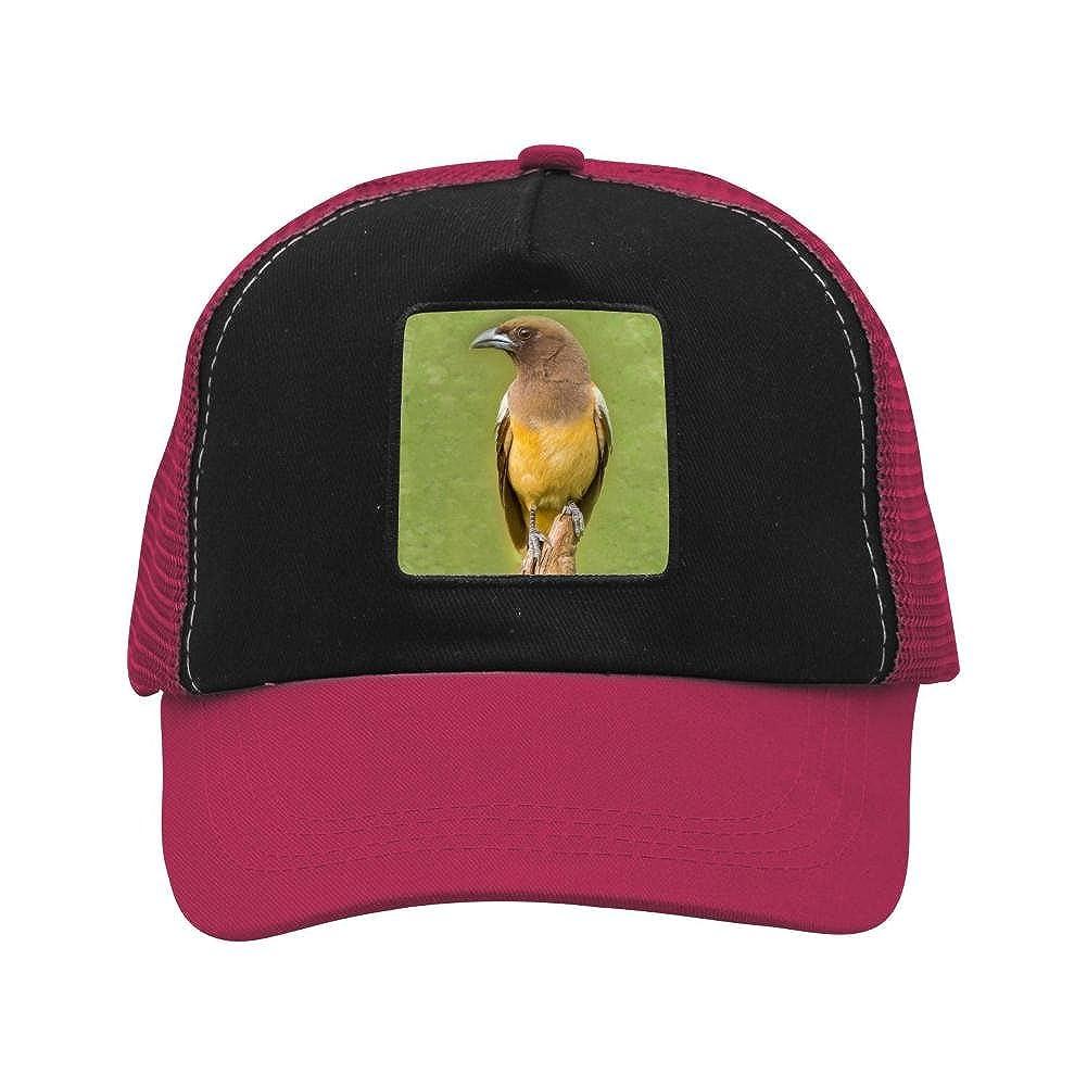 Nichildshoes hat Mesh Caps Hats Adjustable for Men Women Unisex,Print Yellow Bird