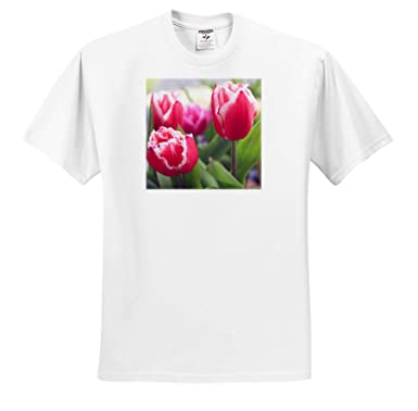Flowers - T-Shirts 3dRose Stamp City Pink Tulips with Jagged Edges That Adorn one of Our Flower Gardens