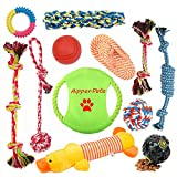 Aipper Dog Rope Toys 10 Pack, Puppy Chew Toys for Playtime and as