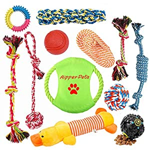 Aipper Dog Puppy Toys 12 Pack, Puppy Chew Toys for Playtime and Teeth Cleaning, IQ Treat Ball Squeak Toys and Dog Flying Disc Included, Puppy Teething Toys for Medium to Small Dogs, (Assorted Colors) 31
