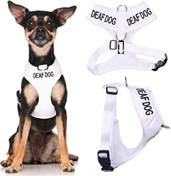 Deaf - Arnés Acolchado e Impermeable para Perro (Perro Tiene ...