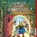 Freitag der Dreizehnte (Der wilde Räuber Donnerpups 3) Hörbuch von Walko Gesprochen von: Martin Baltscheit