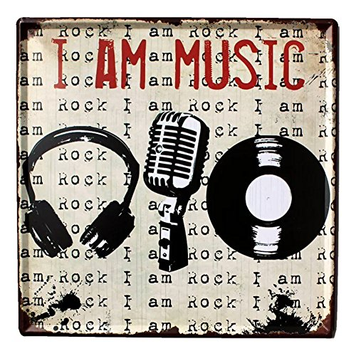 fly-spray-decorative-signs-with-saying-i-am-music-tin-metal-iron-sign-painting-for-wall-home-office-