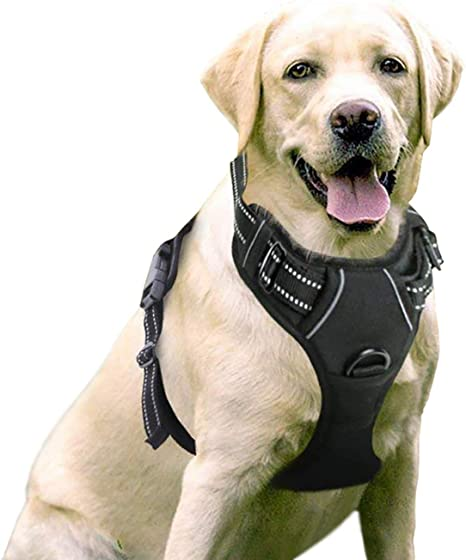 rabbitgoo Dog Harness, No-Pull Pet Harness