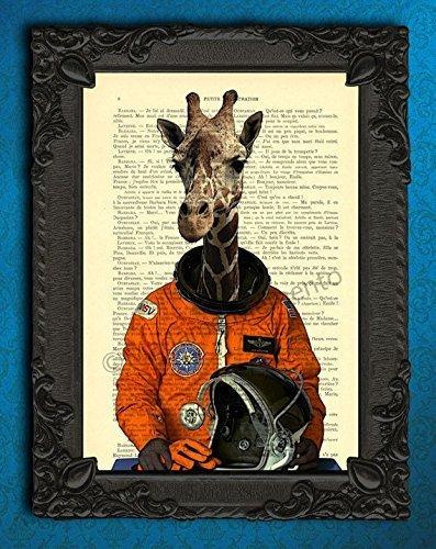 space safari - 6