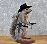 Cowboy Squirrel Taxidermy Statue on Base