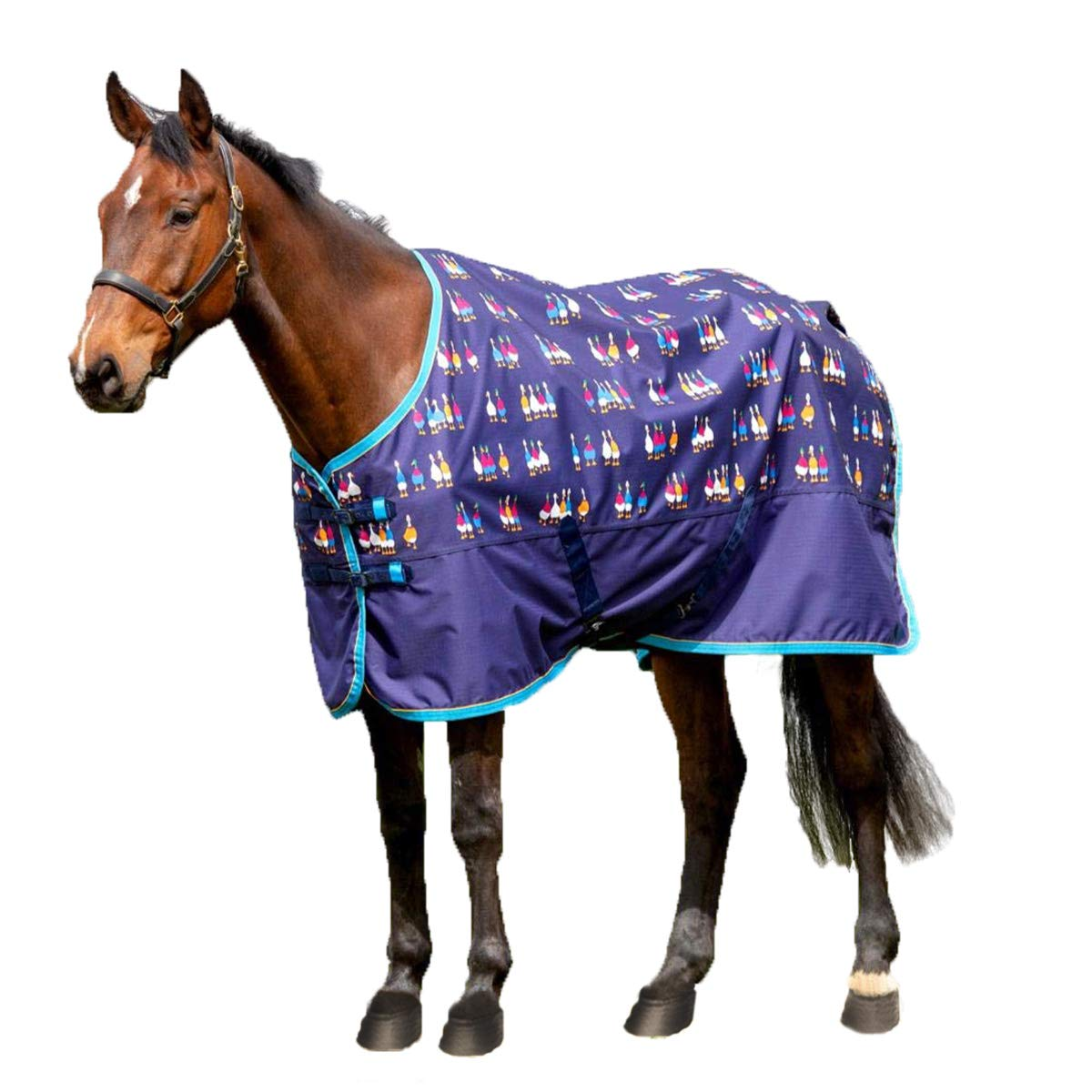 Shires Tempest Original Lite Turnout Sheet (66) by Shires