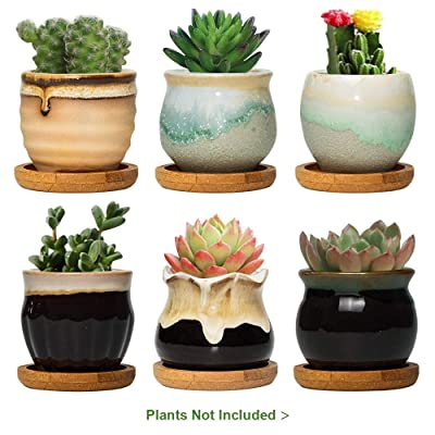 FairyLavie 2.5 Inch Ceramic Succulent Plant Pot, Rustic Style Cute Little Pots for Plants, Planter with Bamboo Tray, Perfect for Home Office Decor and Ideal Gift for Family Friends Colleague, Set of 6: Garden & Outdoor