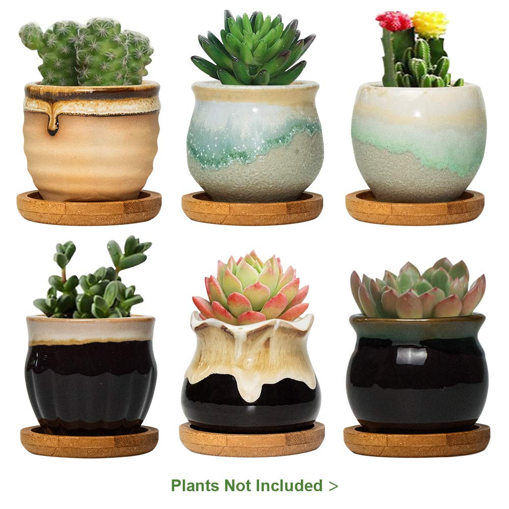 FairyLavie 2.5 Inch Ceramic Succulent Plant Pot, Rustic Style Cute Little Pots for Plants, Planter with Bamboo Tray, Perfect for Home Office Decor and Ideal Gift for Family Friends Colleague, Set of 6