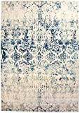 neutral living room decor 8 x 10 Modern/Traditional Vintage Distressed Area Rug for Living Rooms and Open Spaces Overdyed Ivory