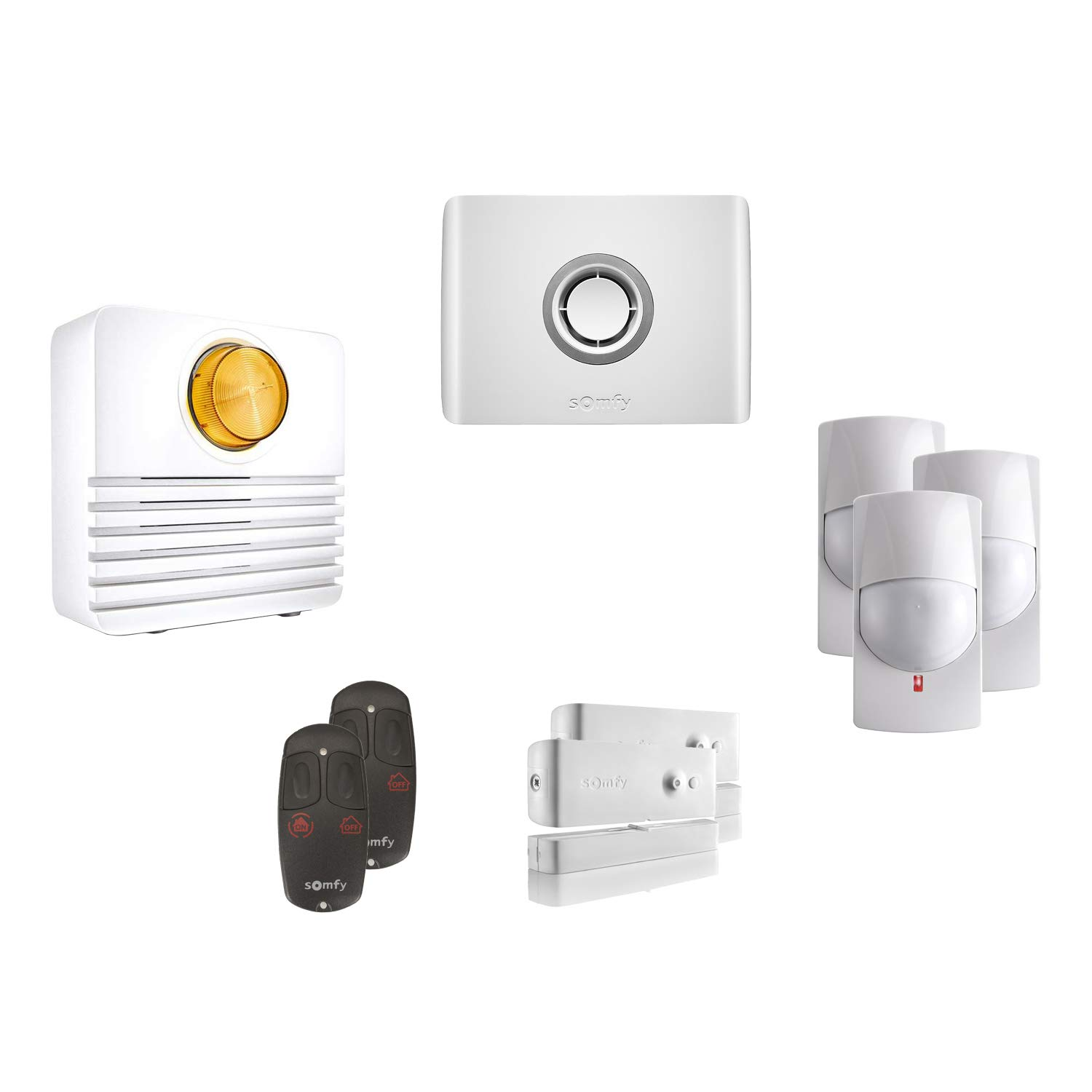 Somfy - 2401535 - Pack Alarma inalámbrica protexiom Online ...