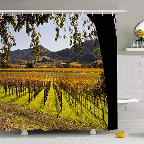Sauvignon Napa Valley - Ahawoso Shower Curtain 72x72 Inches Valley Vineyard Napa Autumn Food Drink Nature Green California Sonoma Fall Grapes Design France Waterproof Polyester Fabric Set with Hooks