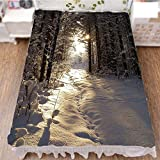 iPrint Bedding Duvet Cover Set 3D Print,Snow and Frozen Forest Sun Rays Very Cold Woods,Fashion Personality Customization adds Color to Your Bedroom. by 90.5''x96.5''
