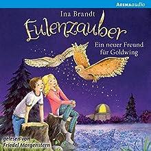 Ein Freund für Goldwing (Eulenzauber 8) Hörbuch von Ina Brandt Gesprochen von: Friedel Morgenstern