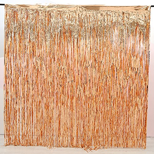 2 Pack Rose Gold Foil Fringe Curtain Decoration - Metallic   Wedding   Hen Party Bachelorette   Decoration   Photo Booth Backdrop   Wall Cover Idea (rose (Photo Holding Ball)