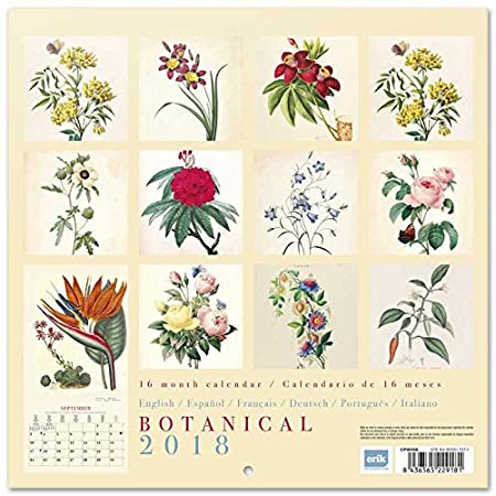 Grupo Erik Editores CP19065 Calendario 2019 Botanical 30 x 30 cm