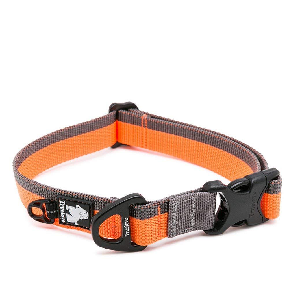 Collier pour chien Clumsypets avec anneau en D et boucle