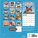 Grumpy-Cat-2017-Wall-Calendar