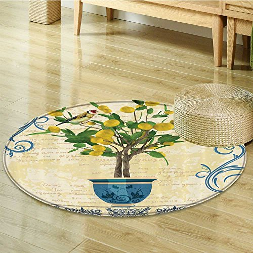 Butterfly Rug Paisley (Lemons Decor Lemon Tree Birds Circle carpet Traditional Tiles Paisley Monarch Butterfly Bird Vintage Style Floral Flowerpot Ceramic Vase Pattern Room Decor Ivory Yellow Green Blue-Diameter 140cm(55