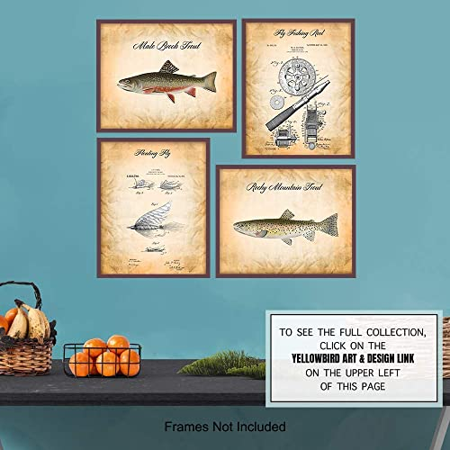Set of three Vintage 11x7 framed freshwater fish trout prints pictures river lake fly fishing decor man cave reels baby boy/'s nursery room