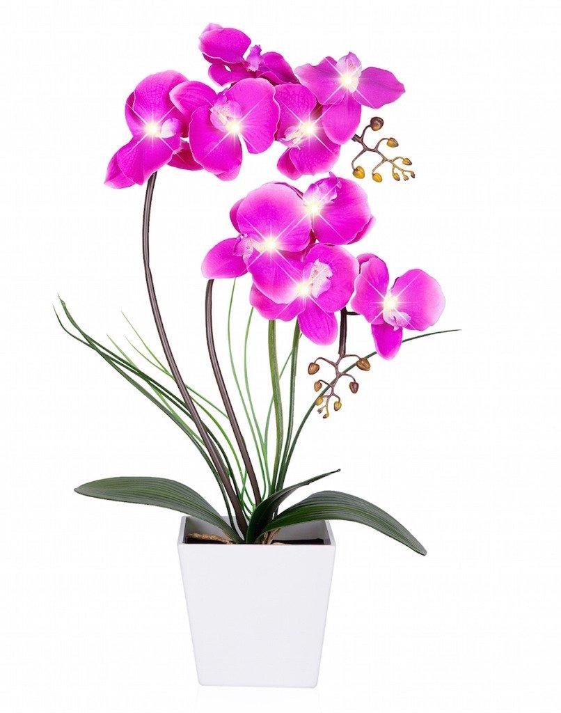 Flores artificiales color púrpura, con luz LED, maceta blanca para orquídeas