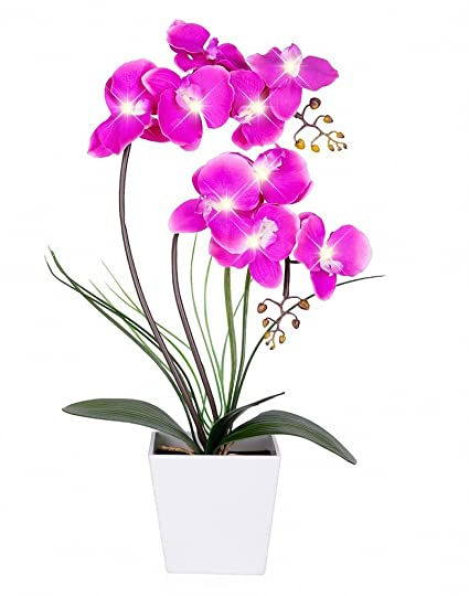 Lights & Lighting Garden Battery Operated Lighted Artificial Potted Arrangement Home Decoration Led Light Blossom Living Room Table Orchid Flower