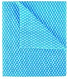 Disposable J Cloths Packet of 50 (Blue)