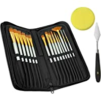 CODIRATO 17 Pcs Paint Brush Set Professional Oil Paint Brushes Artist Watercolor Brushes with Carrying Case for Acrylic Oil Watercolor and Gouache Painting