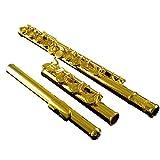 Flute 17 Open And Close Hole Dual-use 18K