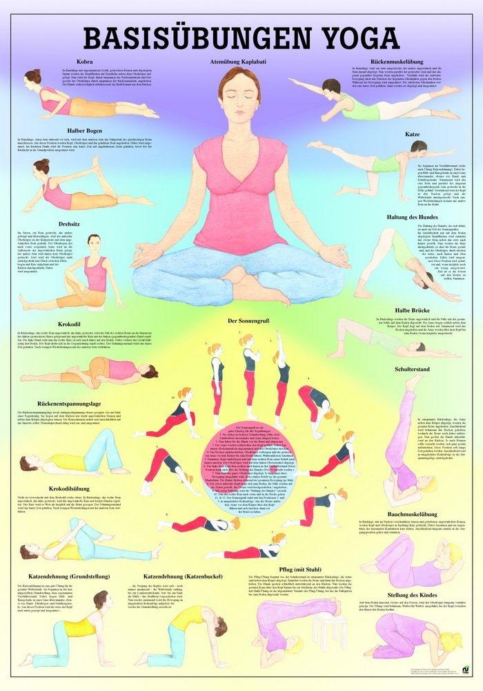 Base Ejercicios Yoga Mini Póster de anatomía 34 x 24 cm ...