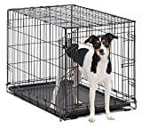 Dog Crate | MidWest iCrate 30″ Folding Metal Dog Crate w/ Divider Panel, Floor Protecting Feet & Leak-Proof Plastic Tray | 30L x 19W x 21H Inches, Medium Dog, Black For Sale