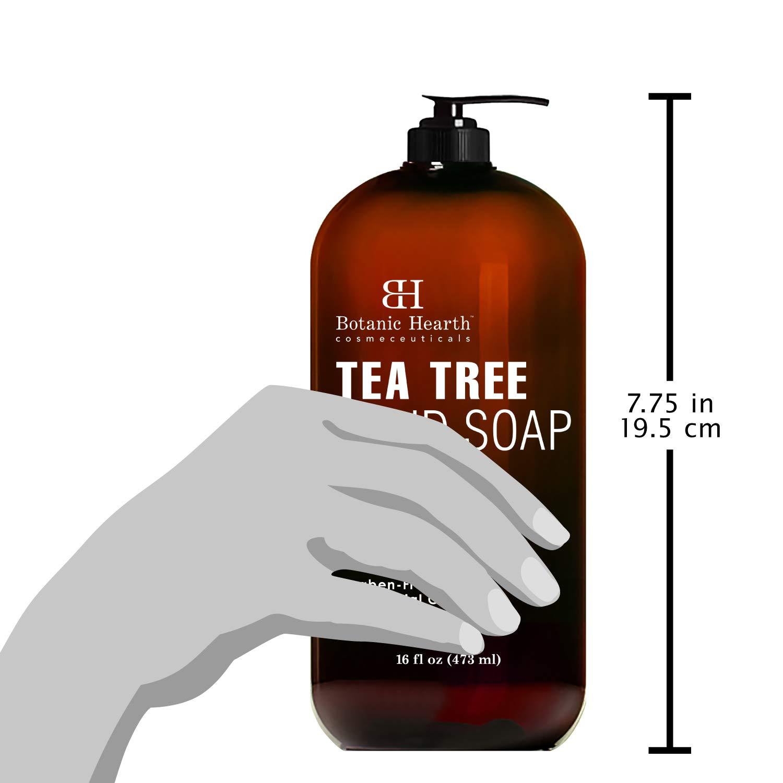 Botanic Hearth Tea Tree Liquid Hand Soap - Sulfate Free Formula - Multi Purpose Hand Wash with Aloe Vera and Therapeutic Grade Tea Tree Oil, Pump Dispenser - 16 fl oz : Beauty