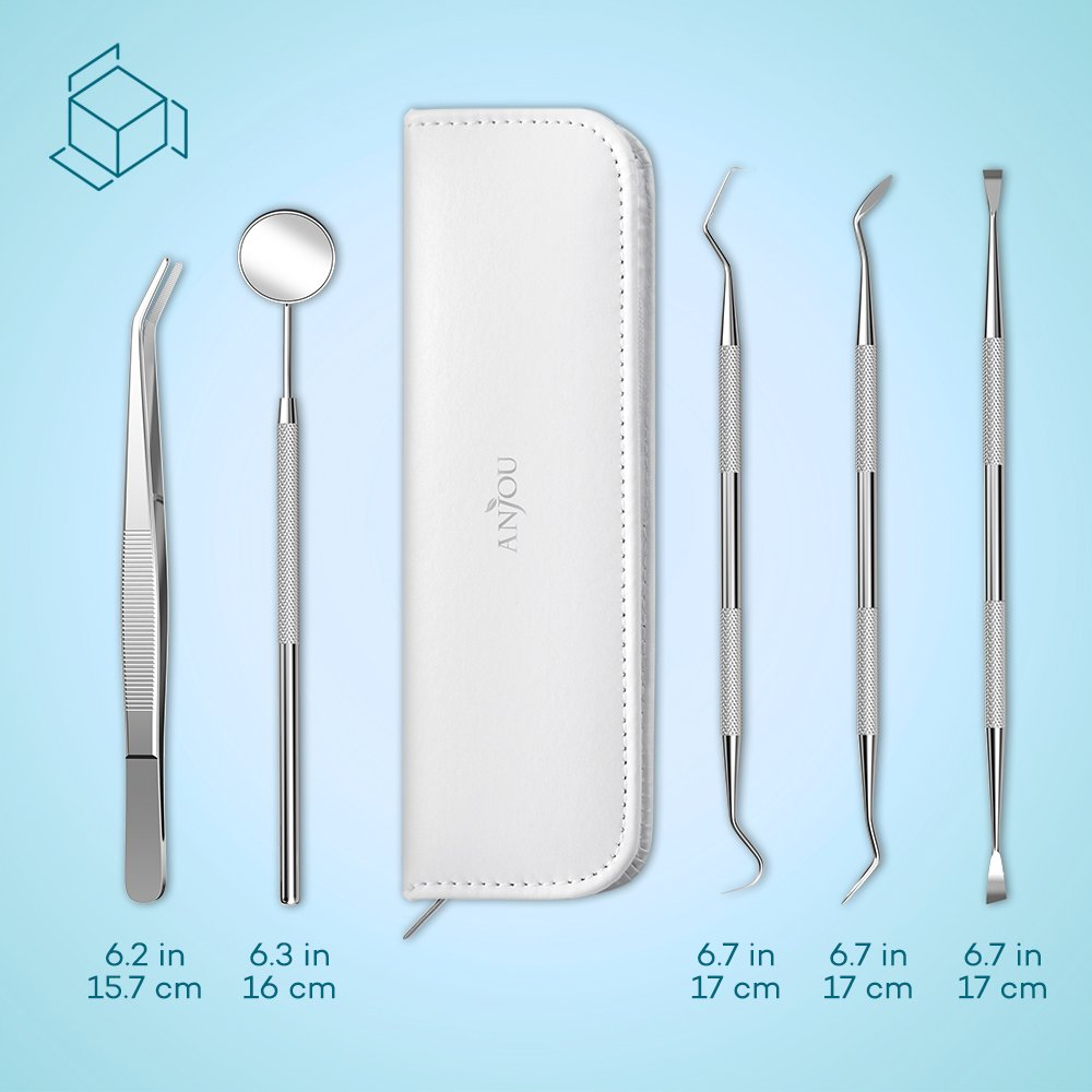 Dental Tools Professional 304 Stainless Steel Anjou 5in1 Dental Hygiene Kit Oral Care Set with Mouth