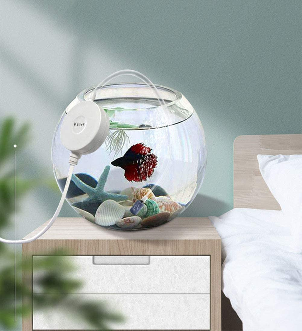 1W 0.5L/min Air Pump with Check Valve Suction Cup for Fish Tanks ...