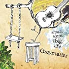 Greymatter - Small Steps in a Big Life [Explicit]