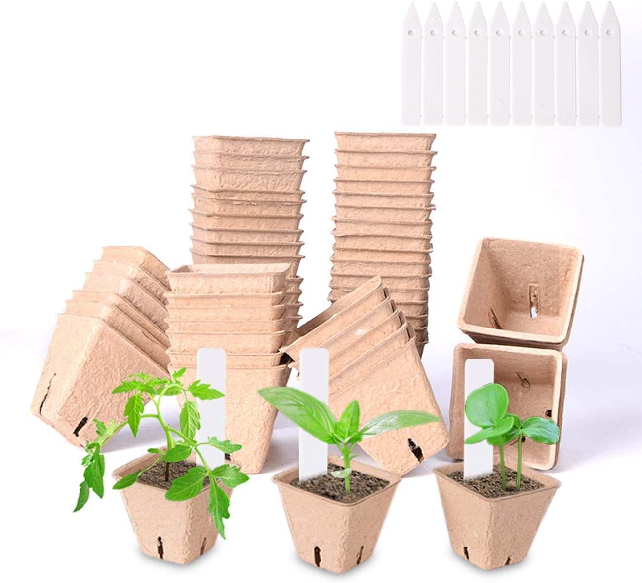 50 Packs 2.36'' Plant & Seed Starter Peat Pots Kit for Garden, 100% Eco-Friendly Organic Biodegradable SeedlingTrays with 10 Plastic Plant Labels (50 Pack, 2.36'')