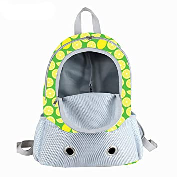 Bolsa Transpirable Para Mascotas De Viaje, Bolsa Para Perros, Impermeable, Para Gatos Malla