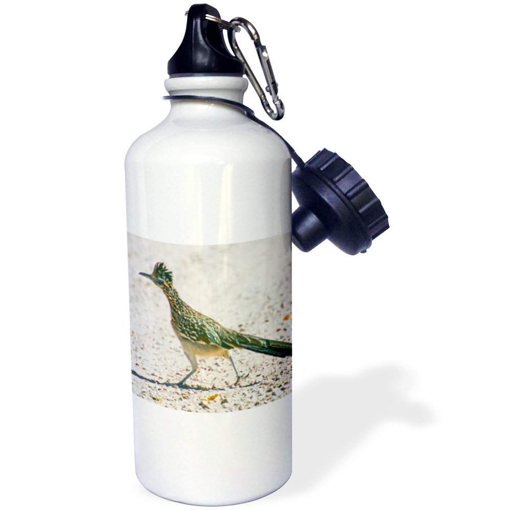 3dRose wb_92557_1'New Mexico, Bosque del Apache, Roadrunner bird US32 BJA0086 Jaynes Gallery' Sports Water Bottle, 21 oz, White