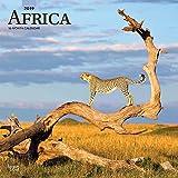 Africa 2019 12 x 12 Inch Monthly Square Wall Calendar, Travel Africa Madagascar Ethiopia Johannesburg Cape Verde