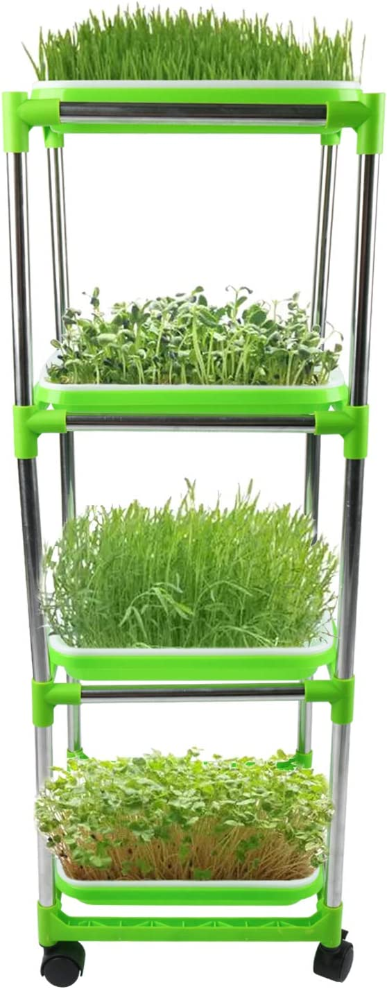 Homend Seed Sprouter Trays with 4 Layers Stainless Steel Shelf Soil-Free Healthy Wheatgrass Seeds Grower & Storage Trays for Garden Home (4 Seed Sprouter Trays with 4 Layers Shelf)