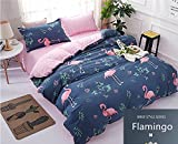 STFLY 4 Pieces Kids Bedding for Teens Boys Girls Bed Cute Animal Pattern Flamingo Printed Bed sheet set, Full Size